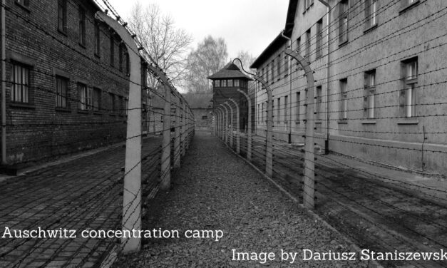 The Theory Of The Holocaust
